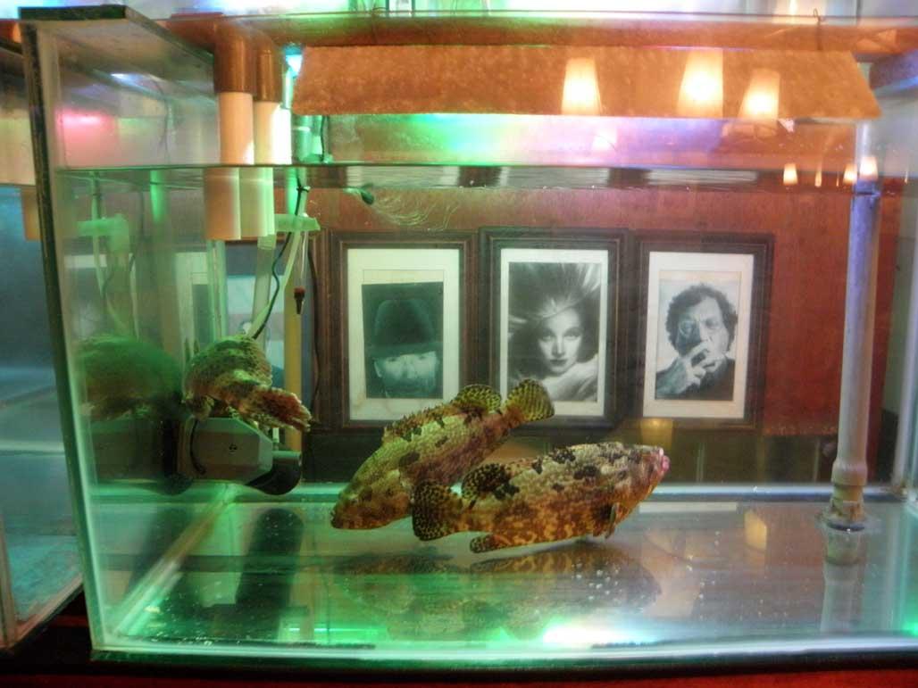 Cafe Batavia fish