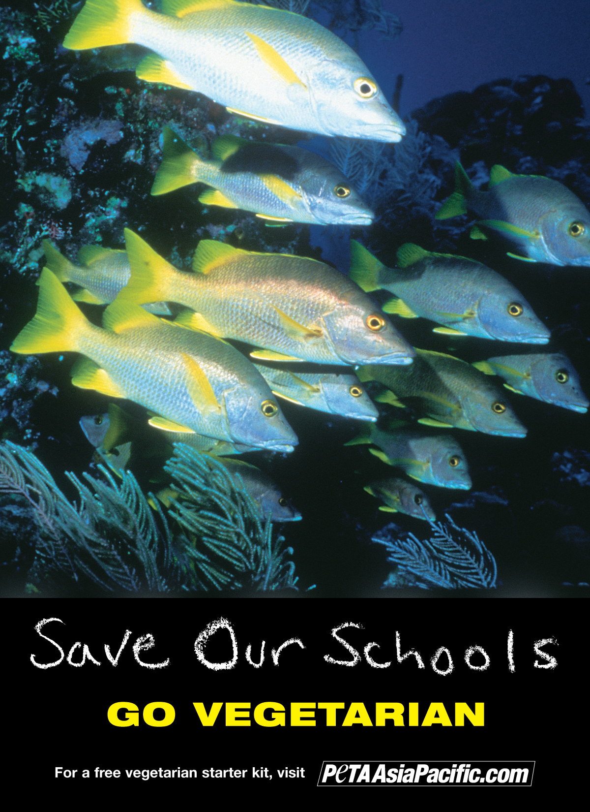 Save Our Schools. Go Vegetarian.