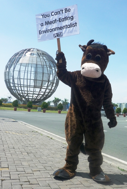 PETA's Cow Protests Al Gore in Manila