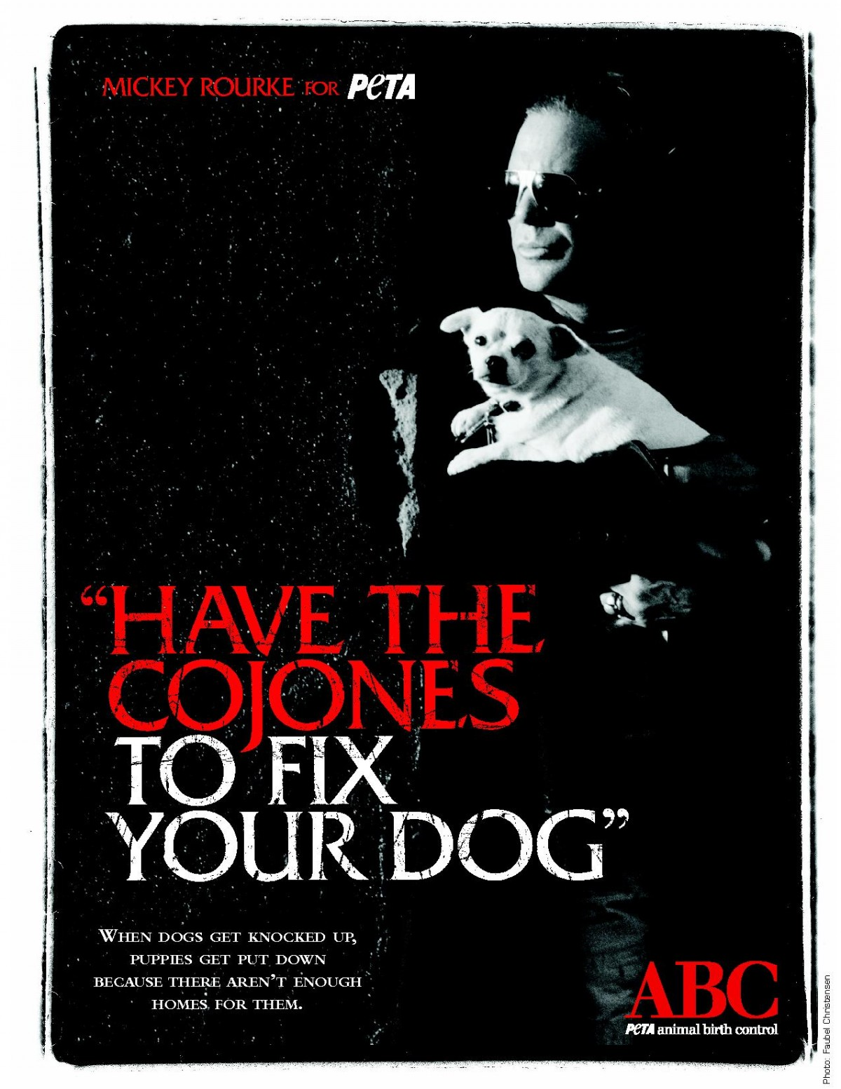 Mickey Rourke Wants You to Spay or Neuter Your Dog