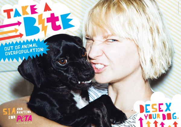 Sia Wants You to 'Take a Bite Out of Animal Overpopulation'