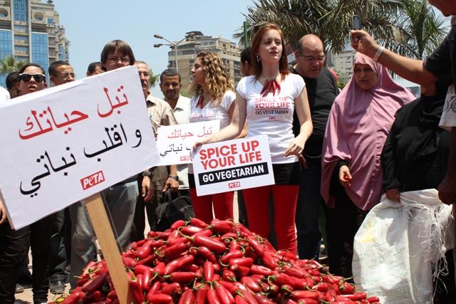 PETA's Chili Chicks Heat Up Cairo
