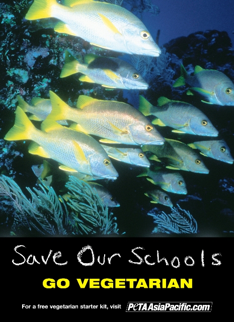 Save Our Schools, Go Vegetarian