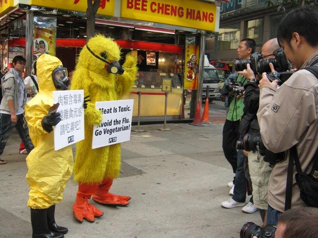 PETA Members Urge Hong Kong Residents to Avoid the Flu, Go Vegetarian