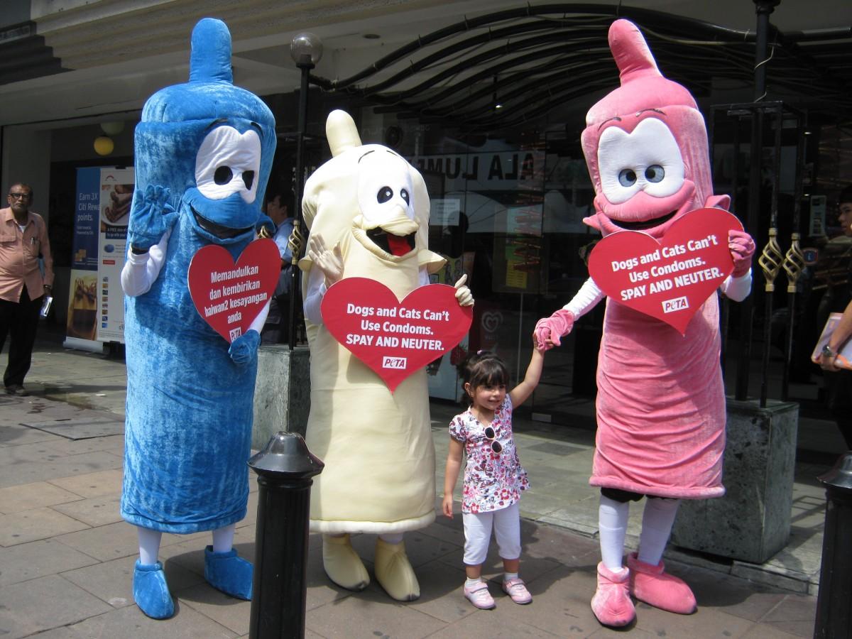 PETA's Condoms Hit Kuala Lumpur