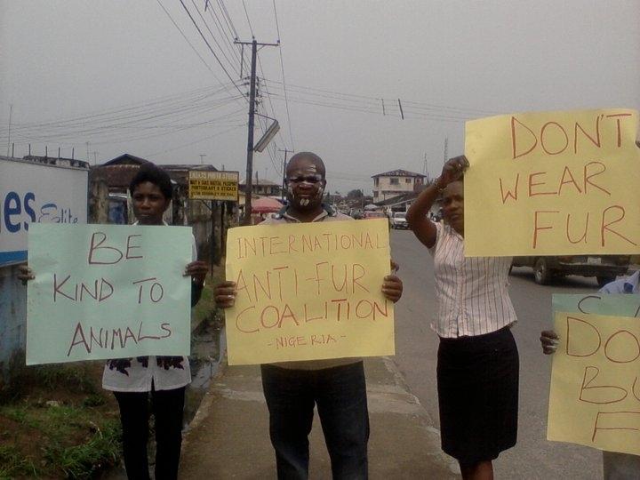 Nigerian Fur Demo