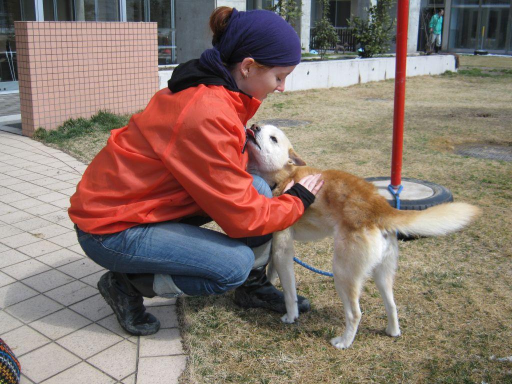 Ashley Fruno with dog after Japan tsunami