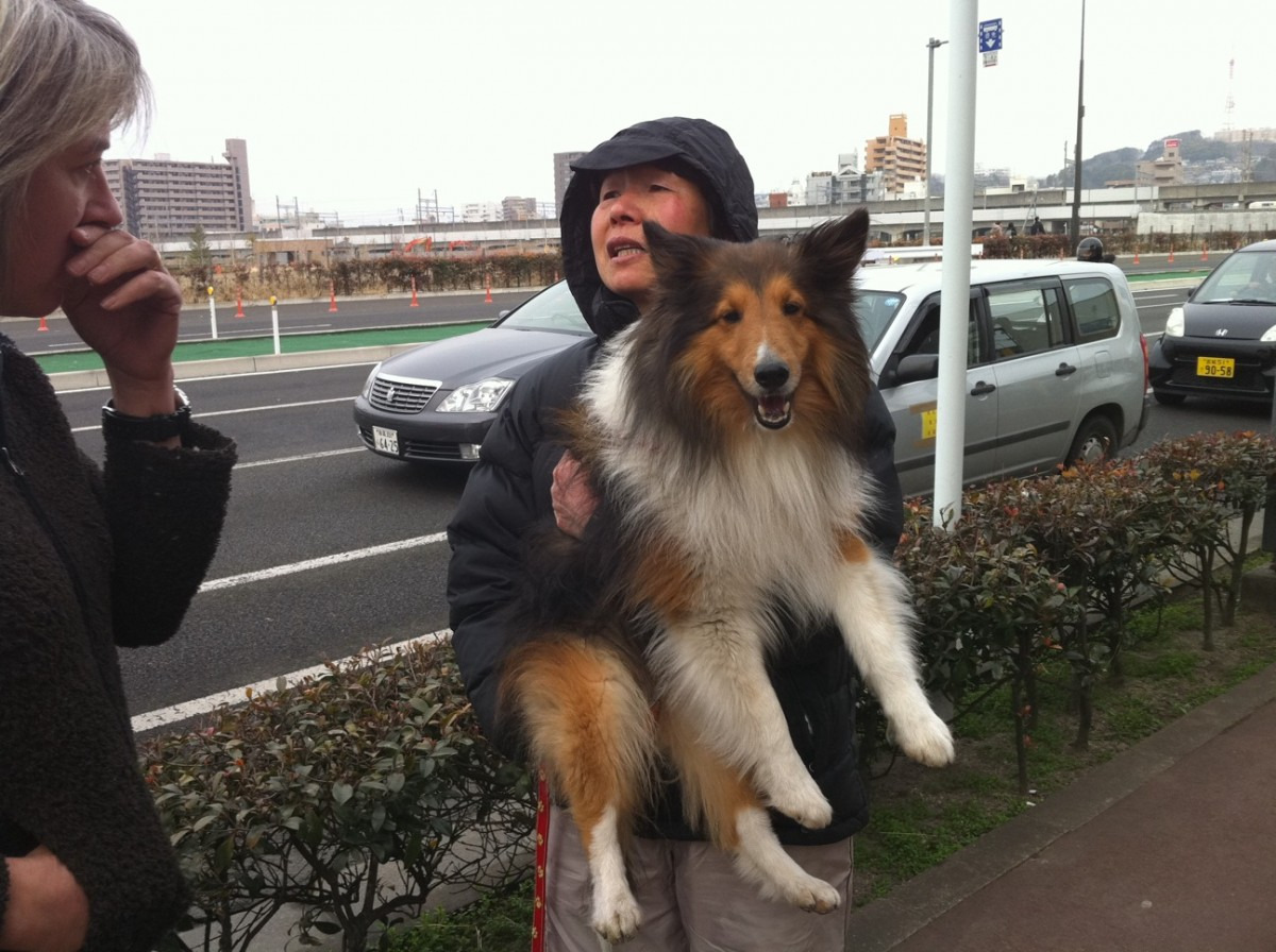 Woman with her dog after Japan tsunami