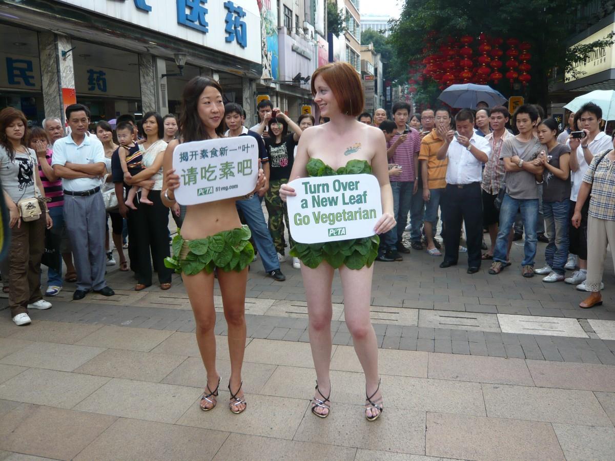 Guangzhou Lettuce Ladies