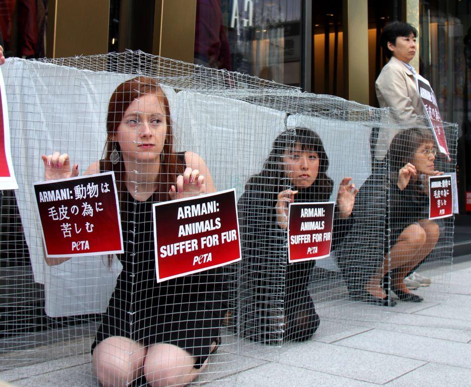 Caged Ladies