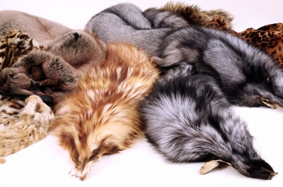 The Fur Industry Is Crashing, and You'll Love the Reason Why