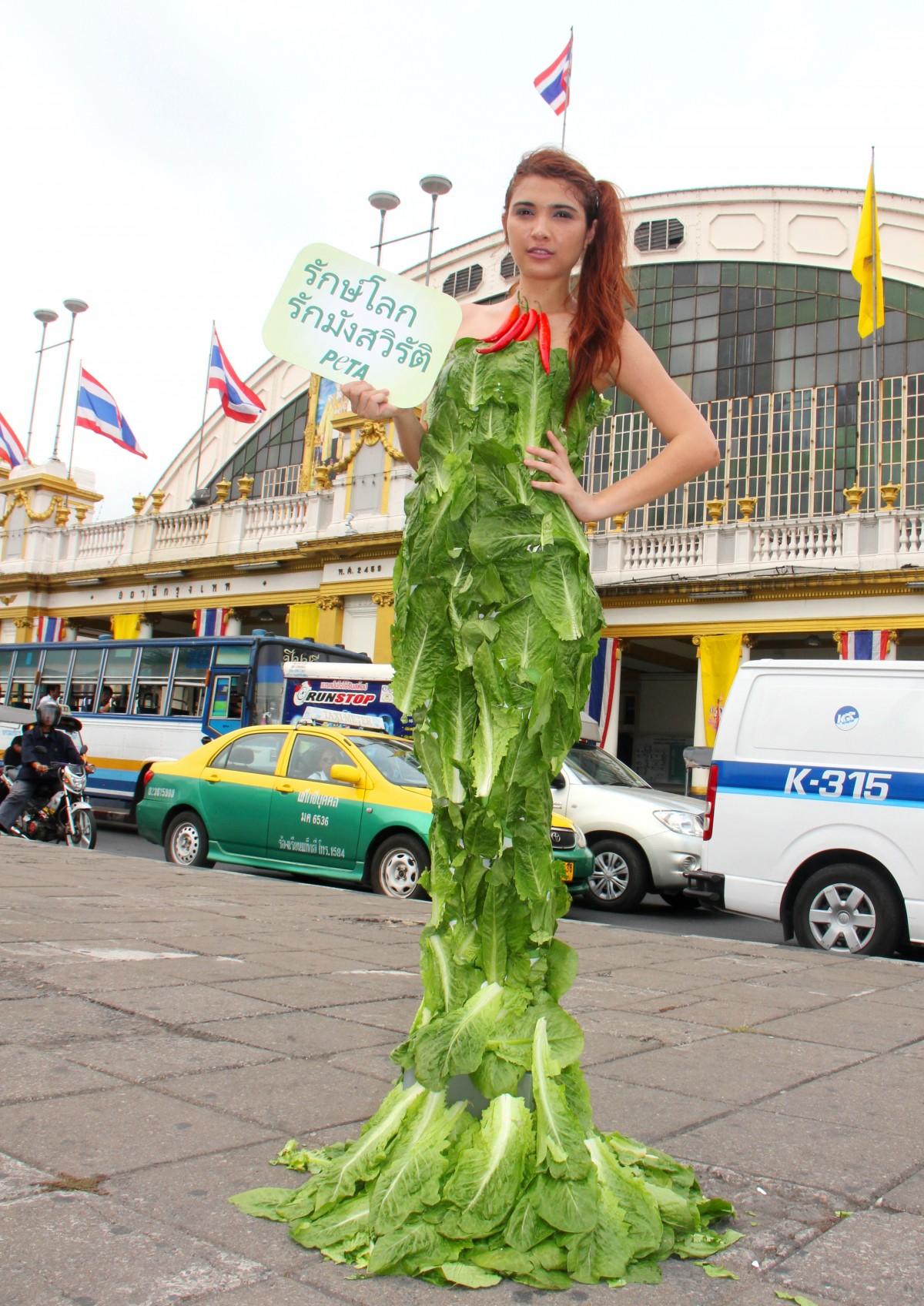 Veg Lettuce