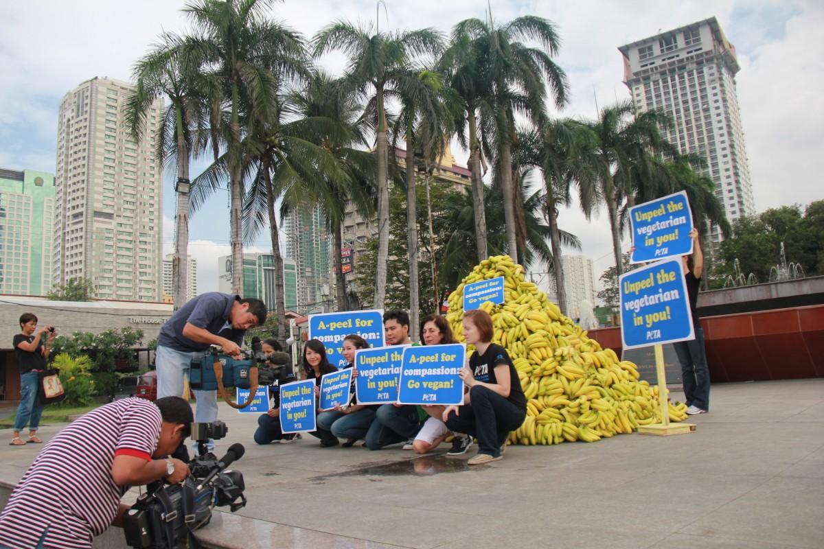Manila PETA protest