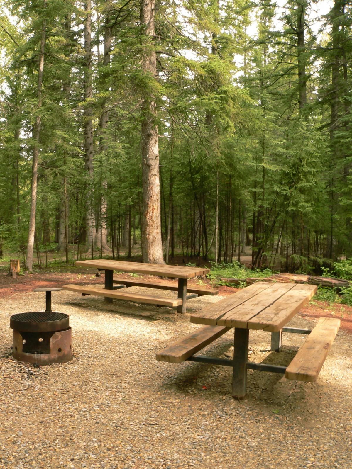 picnic woods
