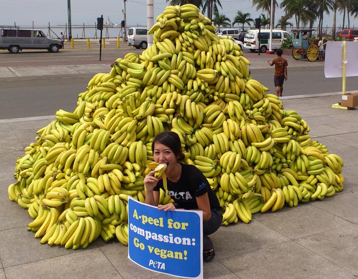 Hailey Chang at banana event