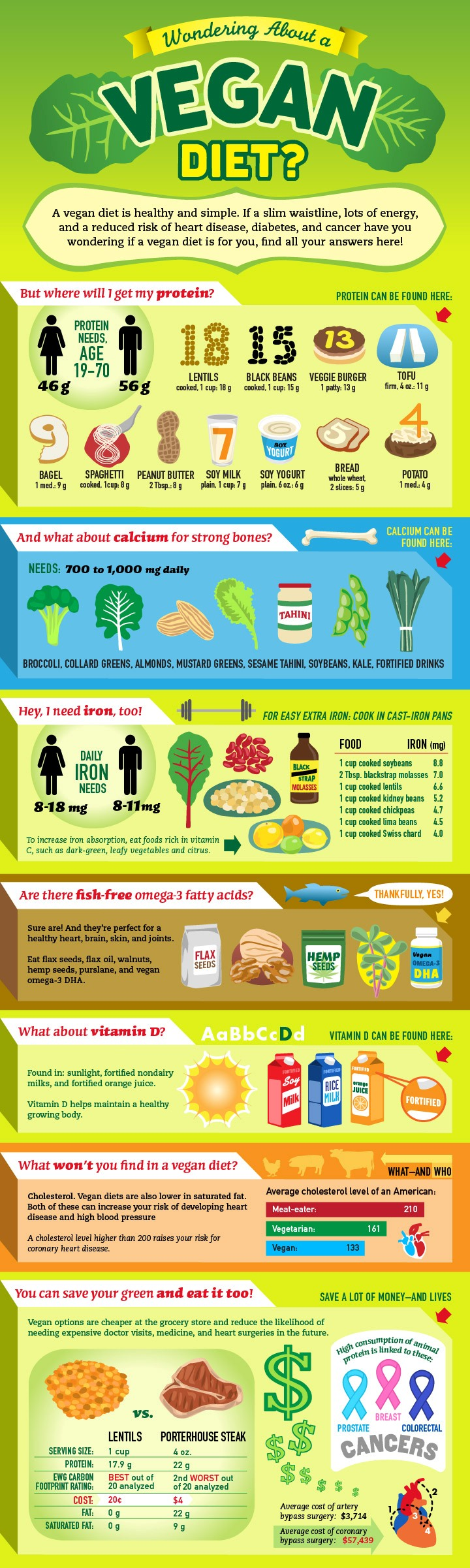 Vegan health infographic