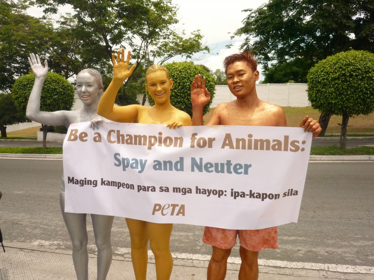 Manila spay and neuter protest