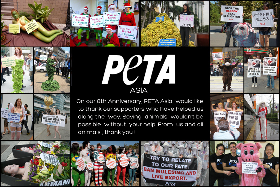 Happy Birthday collage PETA Asia