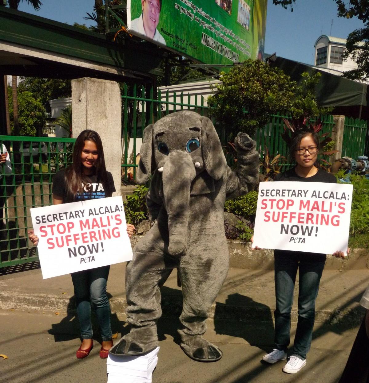Elephant delivers petition