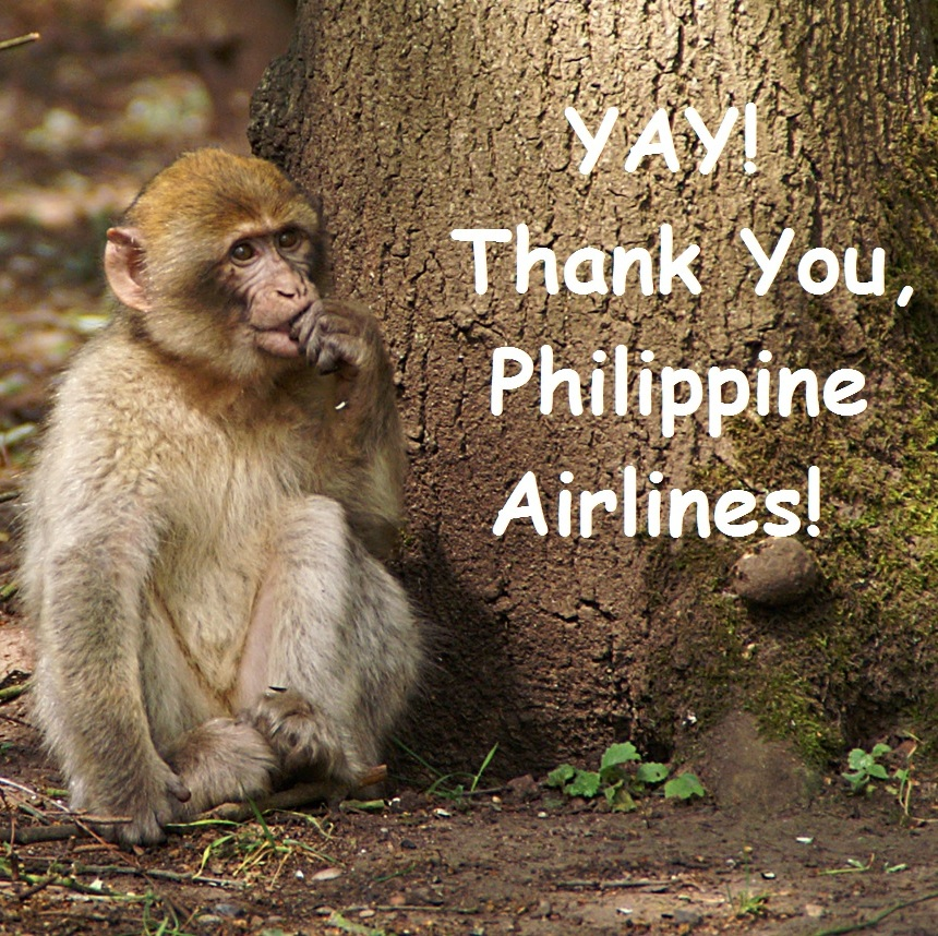 Monkey Philippine Airlines