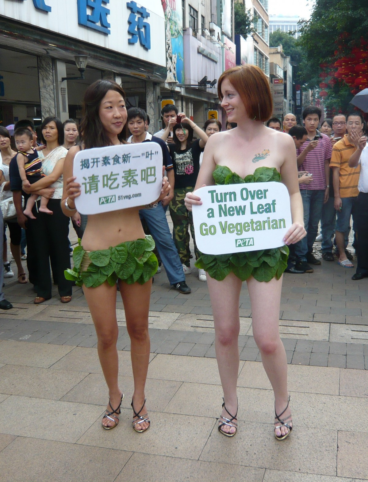 lettuce ladies demo