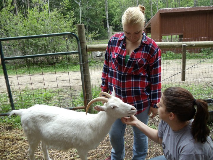 farm sanctuary volunteers