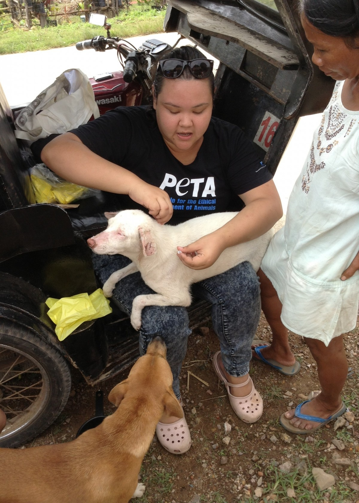 peta disaster relief palawan