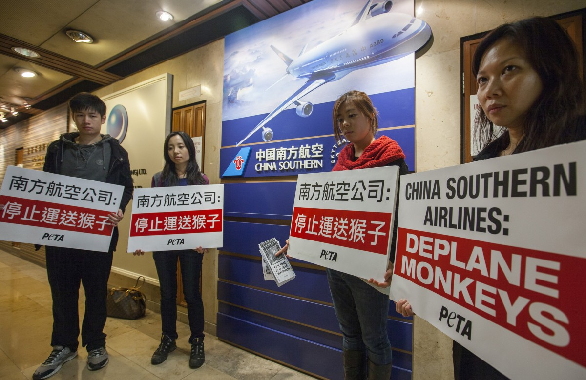 China Southern protest Hong Kong