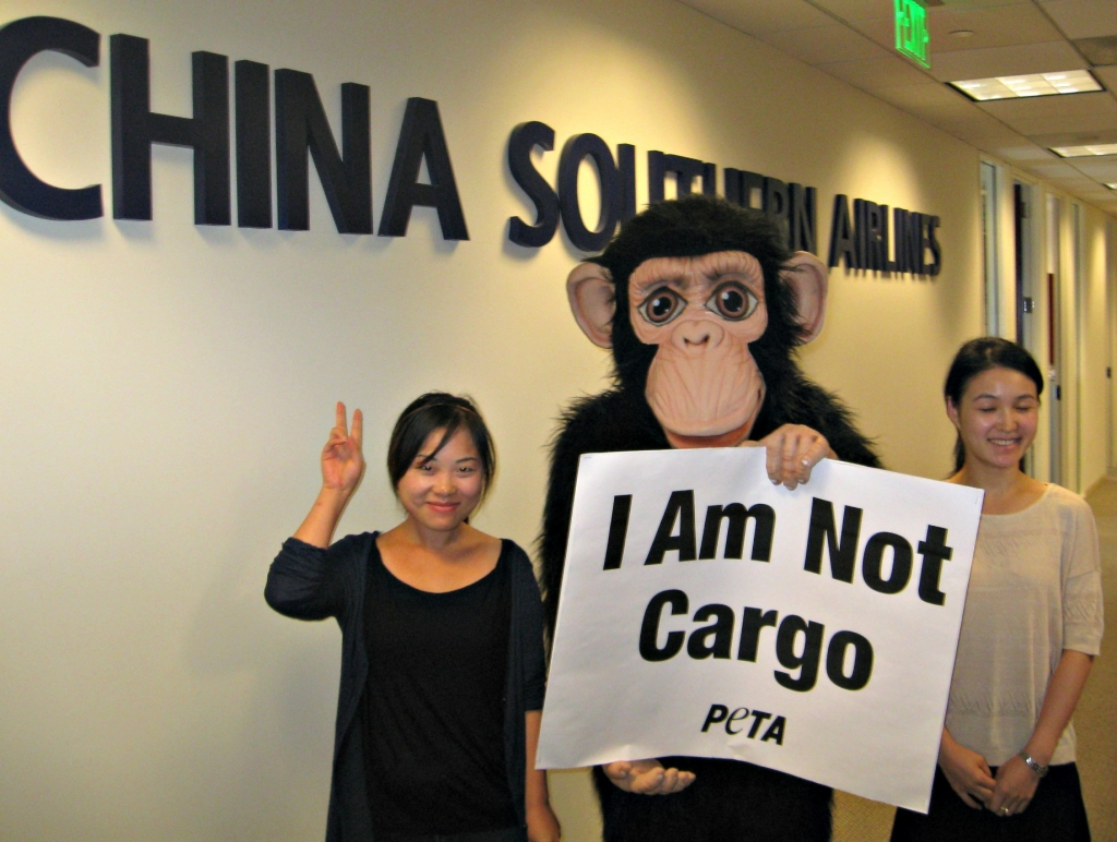 China Southern protest at LAX