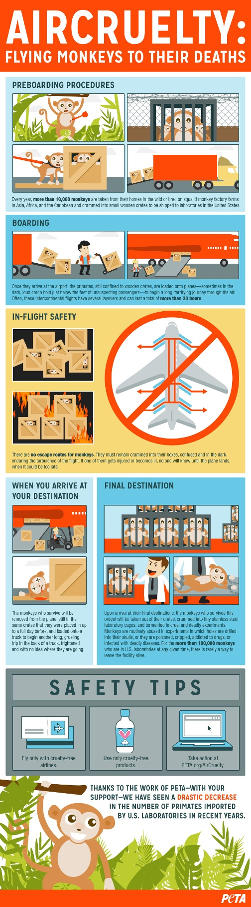 air-cruelty-infographic