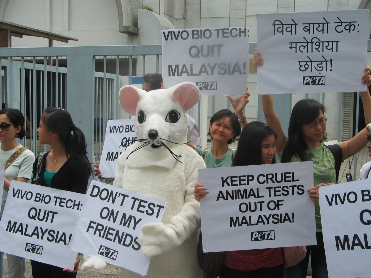 Rat Malaysia Protest