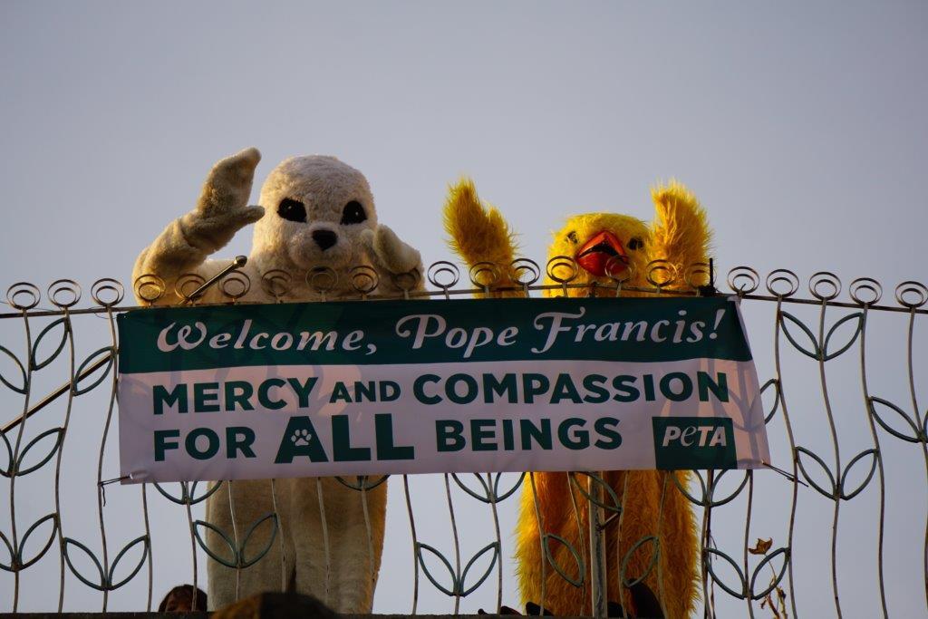 PETA Pope demo