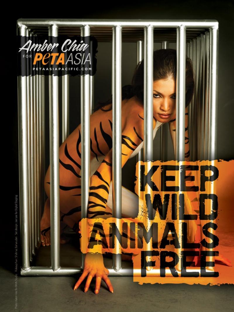 Keep Wild Animals Free
