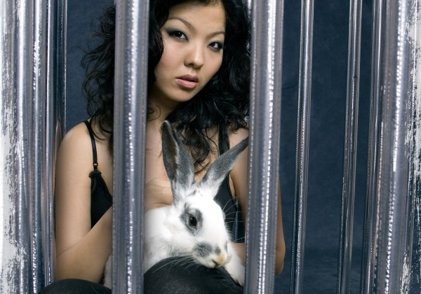 Nominjin: Behind Bars for Bunnies