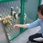 PETA Asia-Pacific Director Jason Baker toured the new Nanjing shelter.