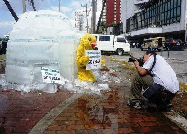 Melting Igloo Confronts APEC Leaders in Manila