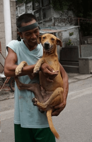 Bonso's owner showered him with lots of love and cuddles when he returned home from his surgery.