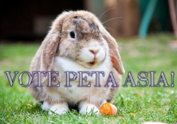Help PETA Asia #WinTheJackpot