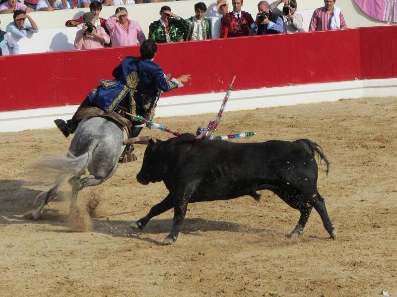 bull-fighting-1080924