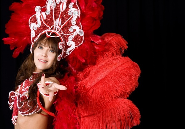 The feathers ripped out of ostriches' skin are used for costumes for the Moulin Rouge and festivals like Brazil's Rio Carnival.