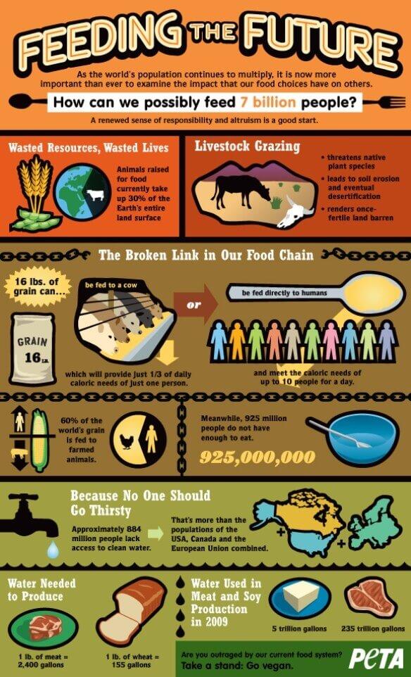 updatedoverpopulation_2D00_infographic_2D00_peta