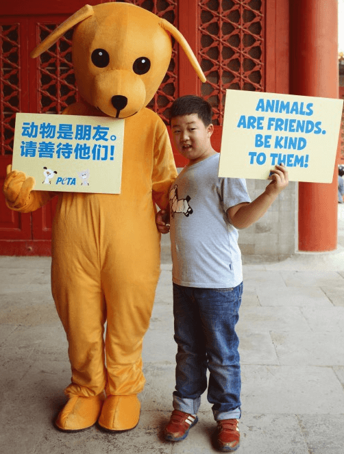 China Boy Dog Edit