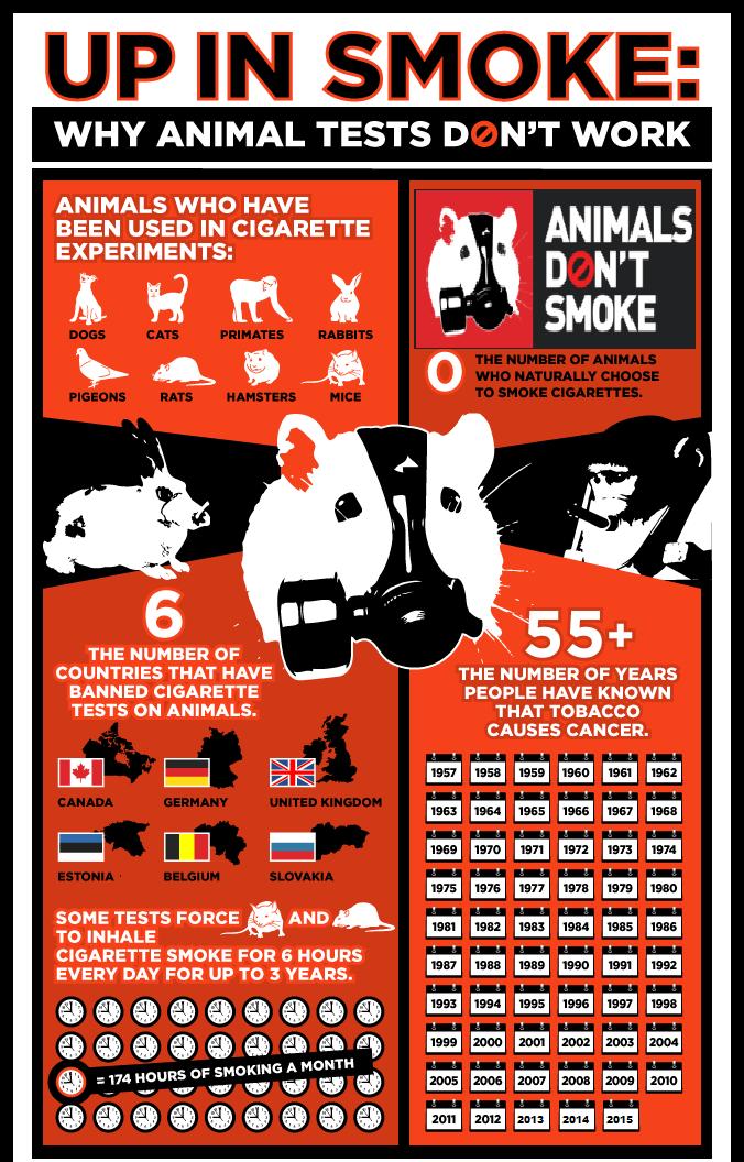 Animals Dont Smoke_1