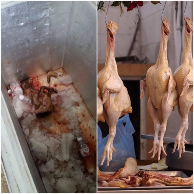 Yulin_dead_dog_chickens