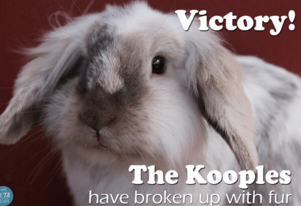 VICTORY: The Kooples Goes Fur-Free!