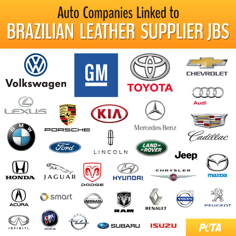 JBS-linked-car-company-infographic