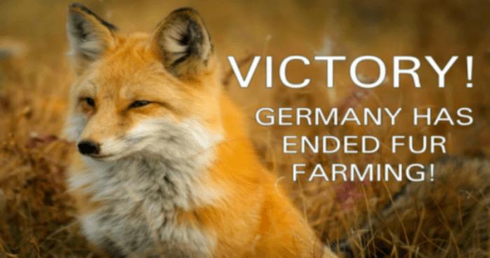 Germany Says Goodbye to Fur Farming