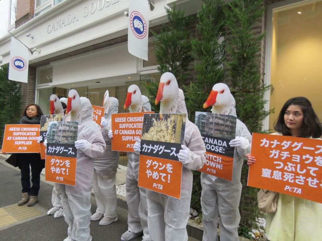 PHOTOS: 'Geese' Protest Canada Goose Store in Tokyo