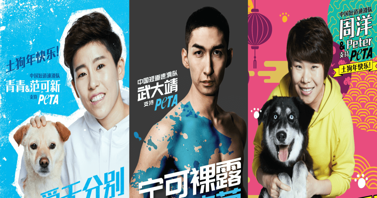 China's Olympic Champions Speak Up for Their Fluffy Friends
