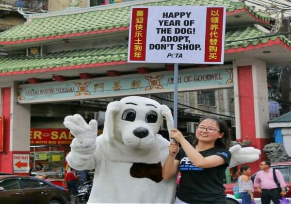 SPOTTED: A Big 'Pup' Celebrates Chinese New Year by Urging People to Adopt, Not Shop
